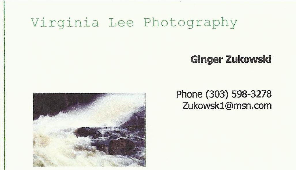 ginger-zukowski-artist